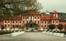 ogród formalny, newgreen.pl