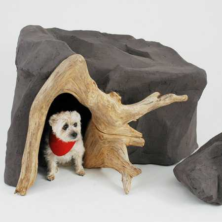 Buda dla psa projekt