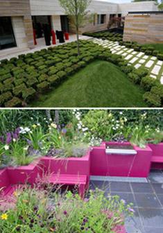 zieleń w ogrodzie nowoczesnym, nwegreen