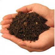 rodzaje gleb, newgreen.pl