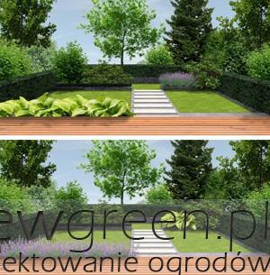 jak dobierać rośliny do małego ogrodu, newgreen.pl