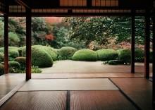 ogród japoński staowi przedłużenie domu, newgreen.pl