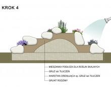 budowa skalniaka krok 4, sadzenie roślin