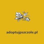 adoptujpszczołe.pl