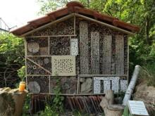 domek dla owadow zapylajacych
