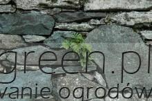 suchy murek, newgreen.pl