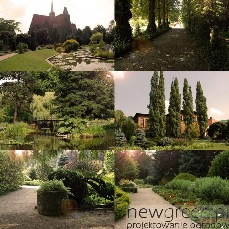 ogrod-botaniczny-we-wroclawiu, newgreen