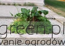Nawet niewielki ogródek warzywno-ziołowy warto mieć w pobliżu kuchni. Fot. Agata Zambrzycka